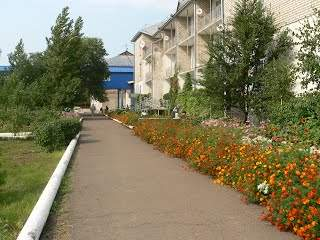 дома интернаты для престарелых и инвалидов в минске