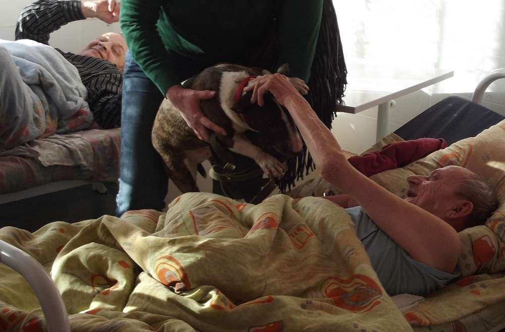 Бабушек по собачьи фото 743-227