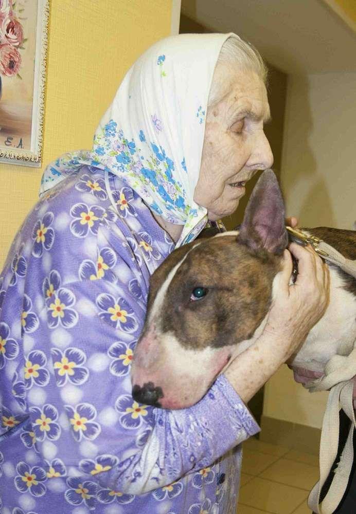 Бабушек по собачьи фото 743-930