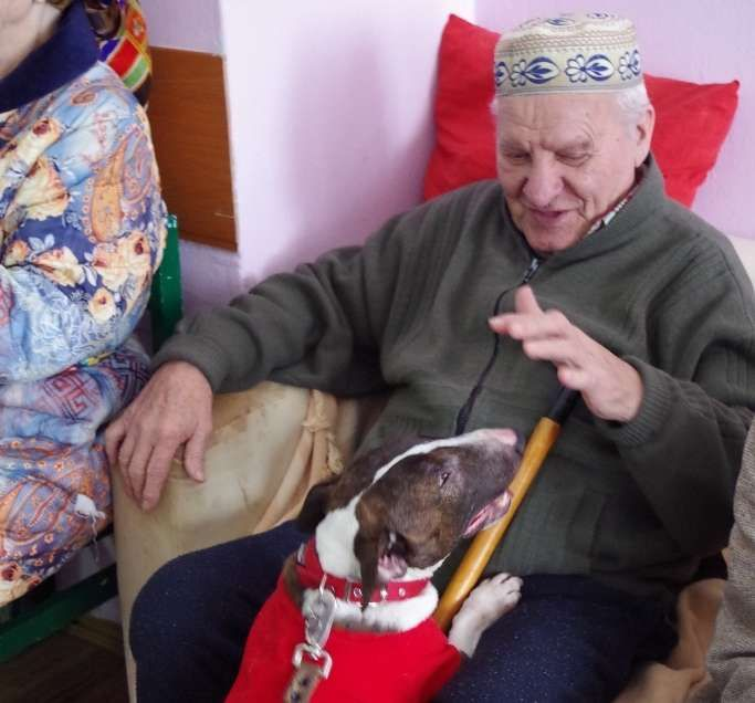 бабушек по собачьи