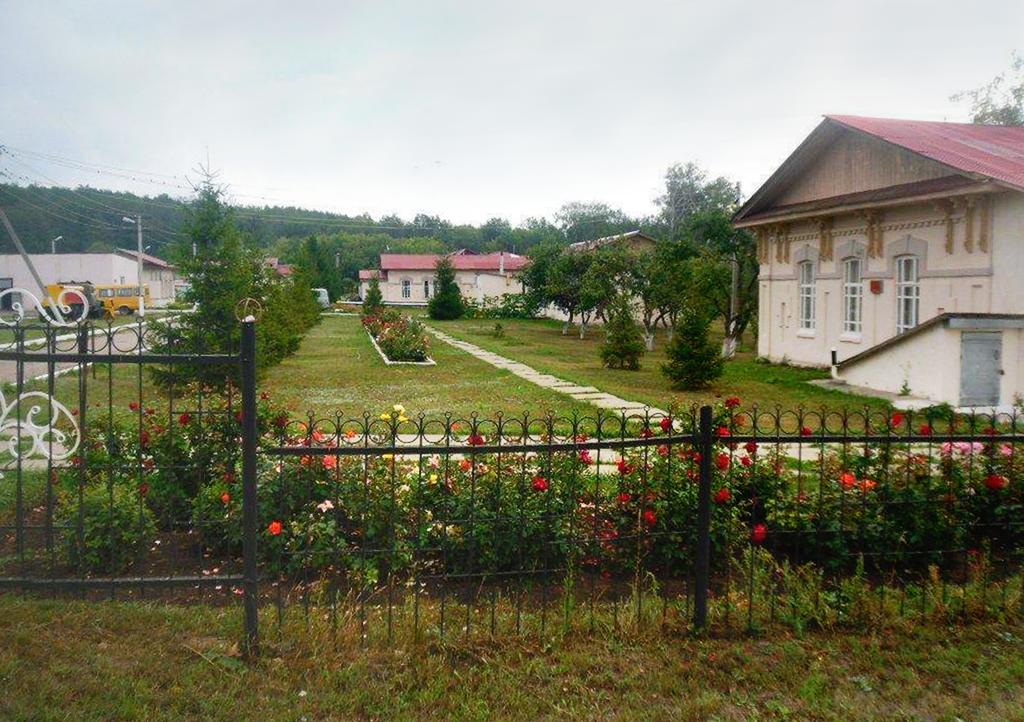 Дома престарелых борский район дом престарелых село середа